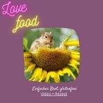 Kurz Videos Love Food